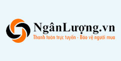 ngan luong theme wordpress viet nam